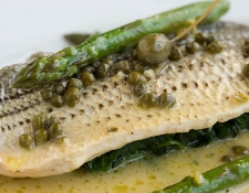 Striped-Bass_Max-Lau